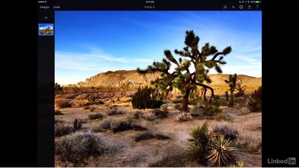 Work on an iPad and iPad Pro: Learning Pixelmator