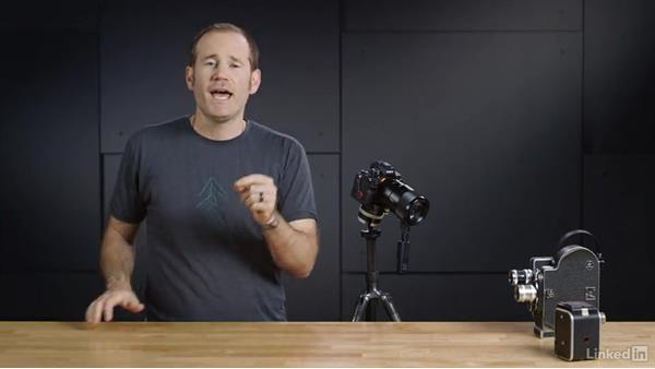 Understanding focus stacking: Photography Tips: Overcoming Camera and Lens Limitations