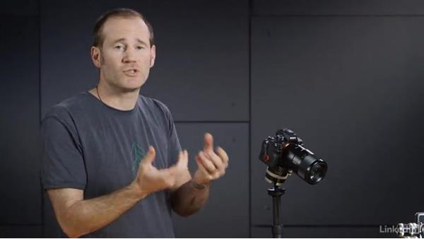 Focus stacking using manual focus: Photography Tips: Overcoming Camera and Lens Limitations