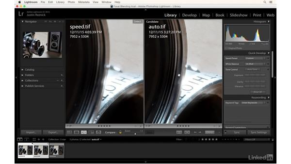 Comparing three focus stacked images: Photography Tips: Overcoming Camera and Lens Limitations