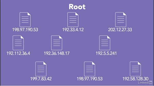 Understanding root-level DNS servers: Managing DNS Essential Training