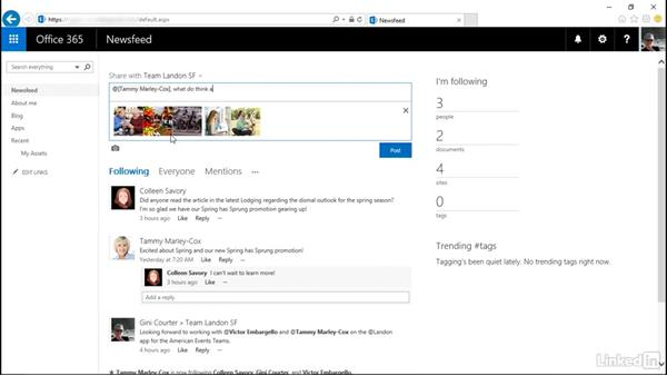 View and post in your newsfeed: SharePoint Online Essential Training