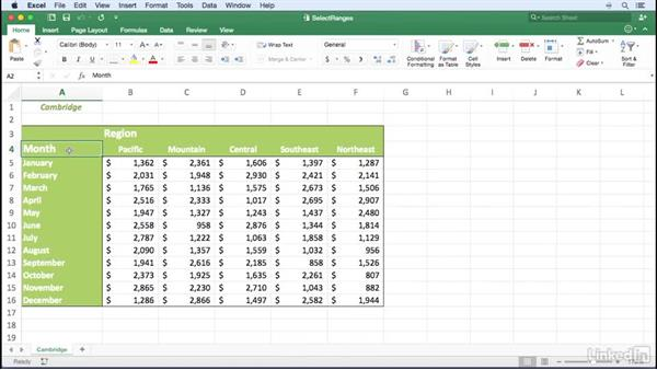 Selecting noncontiguous cell ranges: Excel for Mac 2016 Power Shortcuts