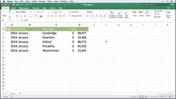 Changing the font size using the keyboard: Excel for Mac 2016 Power Shortcuts