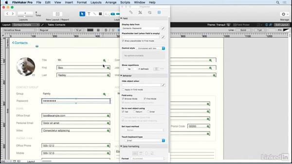 Configure a concealed edit box: FileMaker 15 Platform New Features