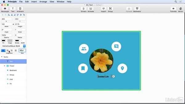 Adding and formatting text: UX Design Tools: Principle