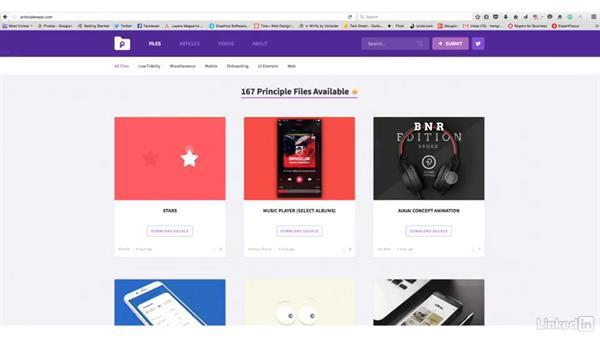Next steps: UX Design Tools: Principle