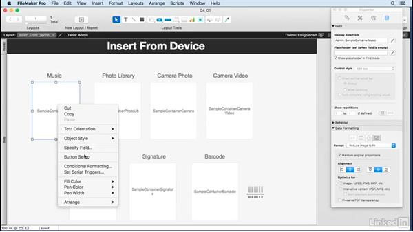 Discussing a container field: Learn FileMaker Go 15: The Basics