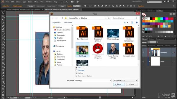 Introducing the pixel-based image: Illustrator CC 2015 One-on-One: Advanced