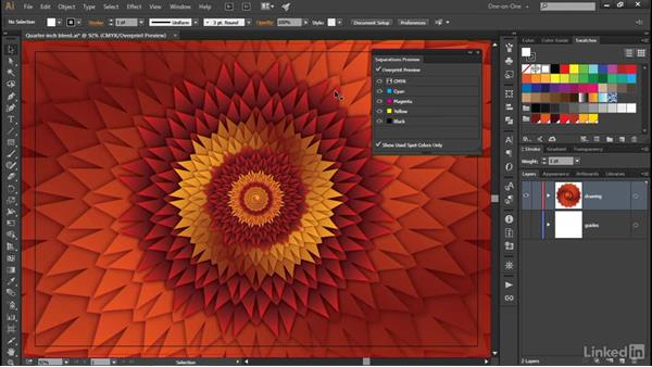 The Separations Preview panel: Illustrator CC 2015 One-on-One: Advanced