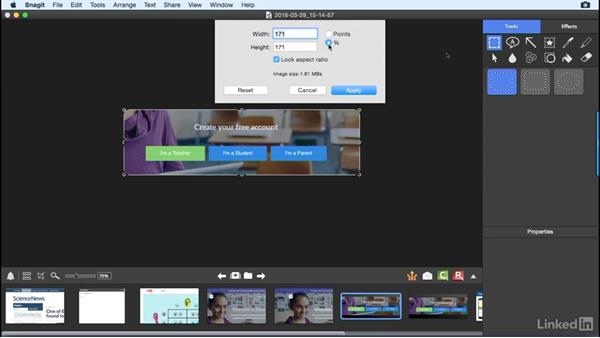 Crop or resize your image: Learn Snagit for Mac: The Basics