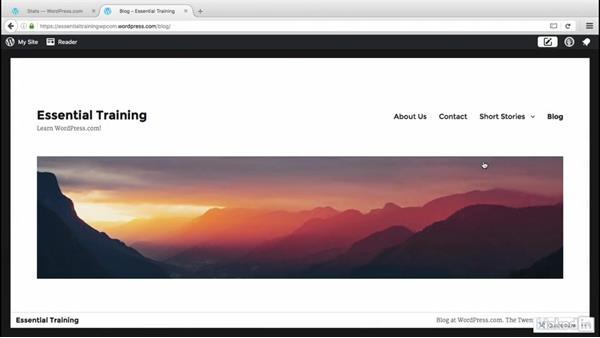 Welcome: WordPress.com Essential Training