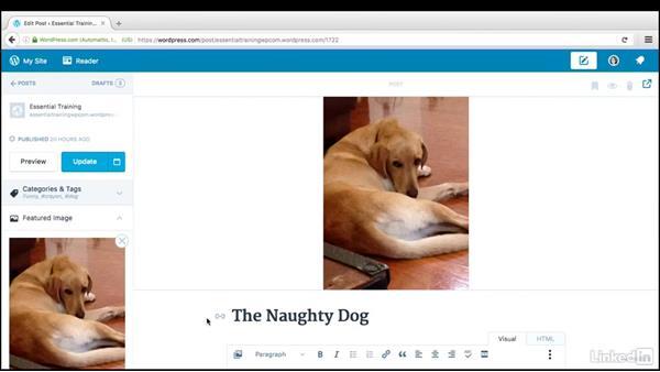 Featured images: WordPress.com Essential Training