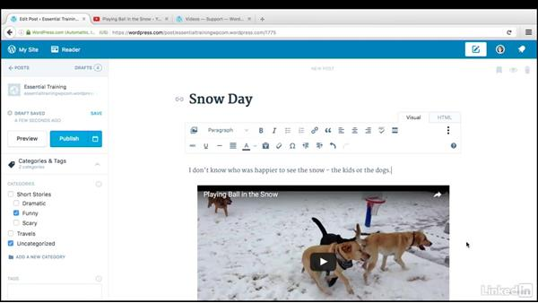 Add videos to pages and posts: WordPress.com Essential Training