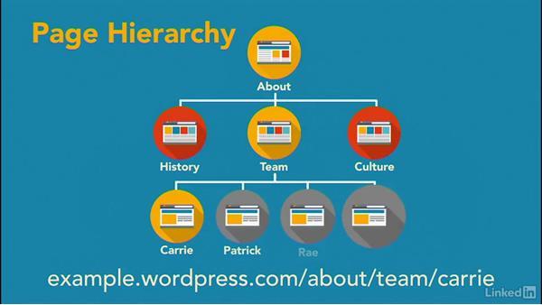 Understand page options: WordPress.com Essential Training