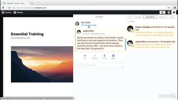 Manage notifications and comments: WordPress.com Essential Training