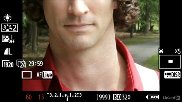 Punching in on Live View mode: DSLR Video Tips: Technical Knowledge