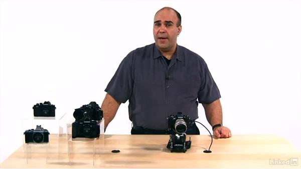 Setting a custom white balance: Olympus OM-D Cameras: Tips and Techniques