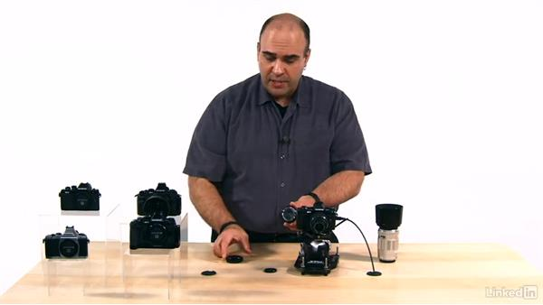 The Olympus budget lenses: Olympus OM-D Cameras: Tips and Techniques