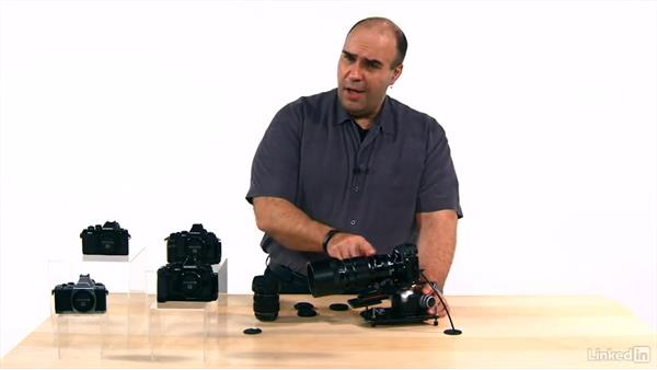 Using a teleconverter/extender to modify your lenses: Olympus OM-D Cameras: Tips and Techniques
