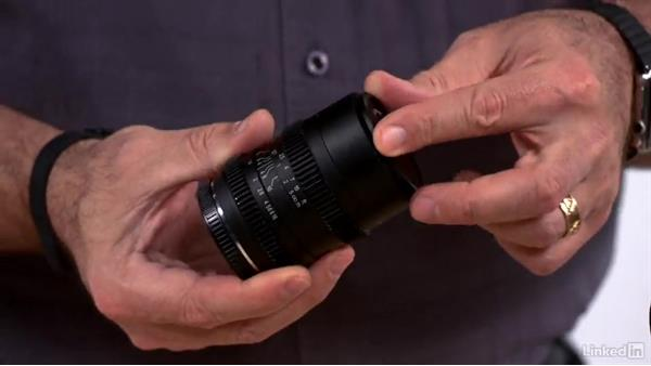 Lenses optimized for video shooting: Olympus OM-D Cameras: Tips and Techniques