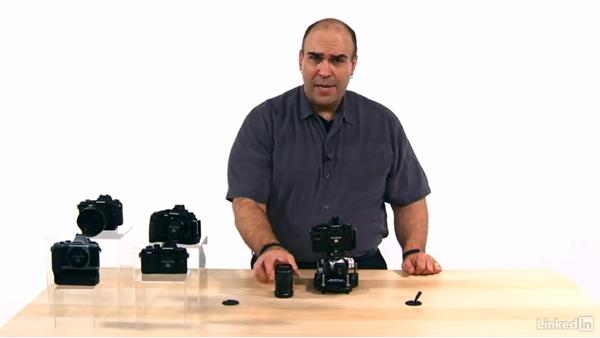 Essential spare parts: Olympus OM-D Cameras: Tips and Techniques