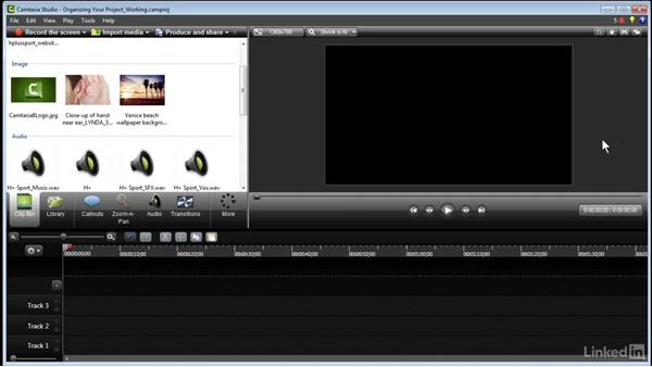 Organizing your project: Learn Camtasia: Advanced Techniques