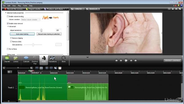 Removing noise: Learn Camtasia: Advanced Techniques