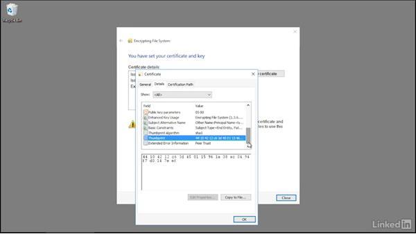 Using EFS: Securing Windows 10