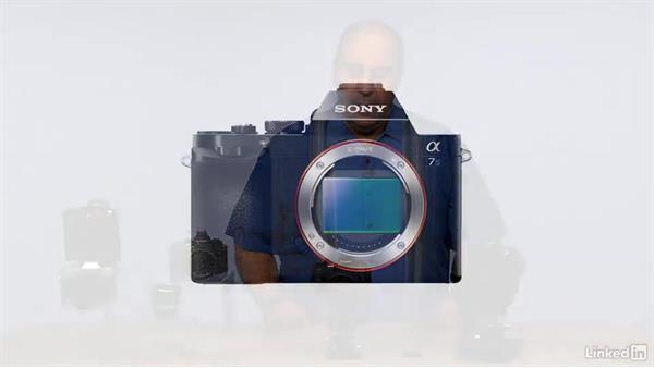 Understanding sensor size: Mirrorless Camera Fundamentals