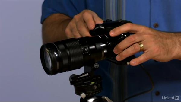 Using a teleconverter and extender to modify your lenses: Mirrorless Camera Fundamentals