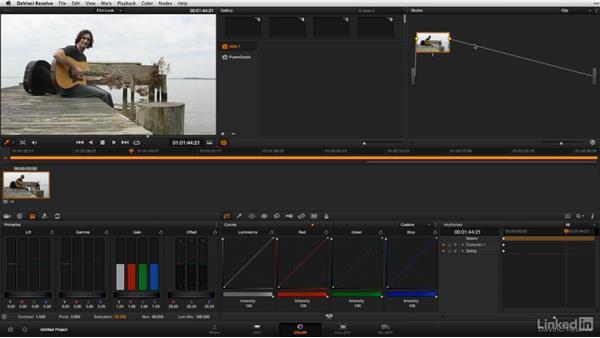 Using Resolve presets: DSLR Video Tips: Software