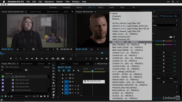 What you'll learn in this course: Premiere Pro Guru: LUTs and Look Files
