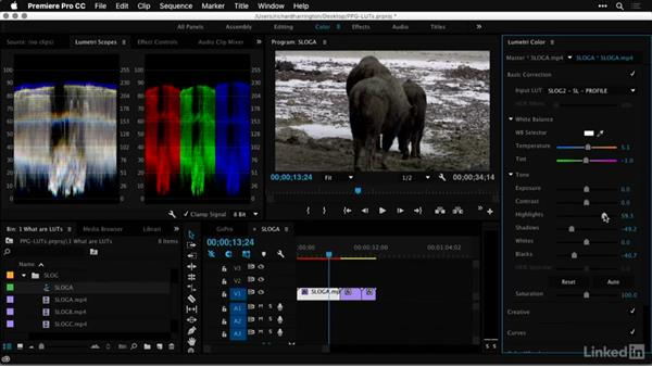 Who this course is ideal for: Premiere Pro Guru: LUTs and Look Files