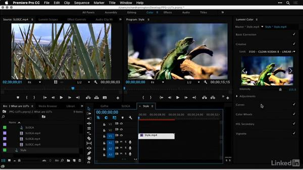 Using a style LUT: Premiere Pro Guru: LUTs and Look Files