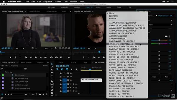 Applying camera-based, corrective LUTs: Premiere Pro Guru: LUTs and Look Files