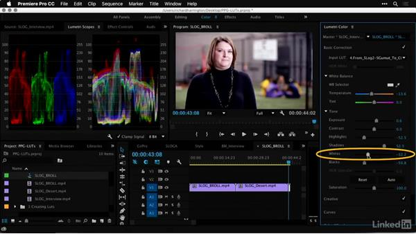 Normalizing the exposure and color: Premiere Pro Guru: LUTs and Look Files