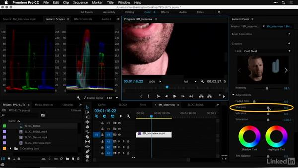 Applying LUTs for style and simulation: Premiere Pro Guru: LUTs and Look Files