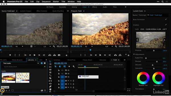 Using the Libraries panel: Premiere Pro Guru: LUTs and Look Files