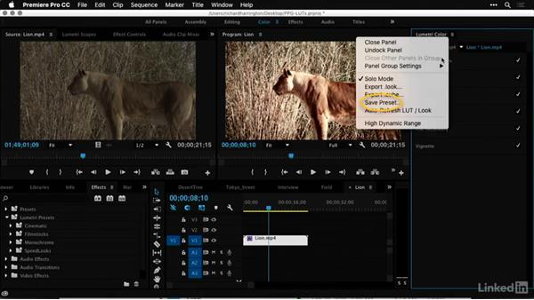 Adding custom presets: Premiere Pro Guru: LUTs and Look Files