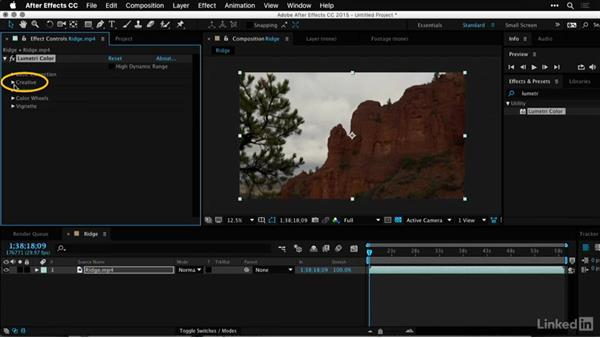 Exchanging footage and LUTs with After Effects: Premiere Pro Guru: LUTs and Look Files