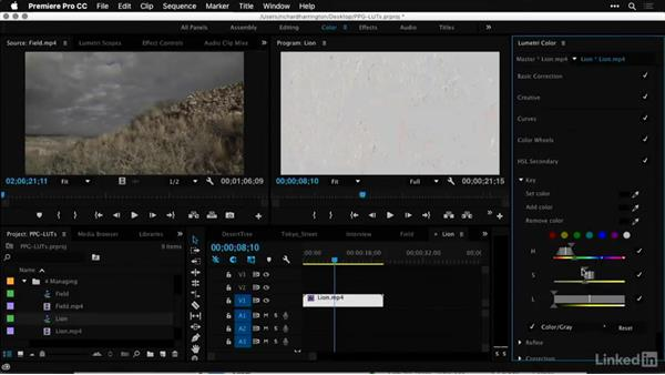 Goodbye: Premiere Pro Guru: LUTs and Look Files