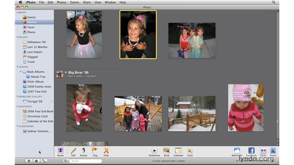 Understanding the iPhoto interface: iPhoto '09 Essential Training