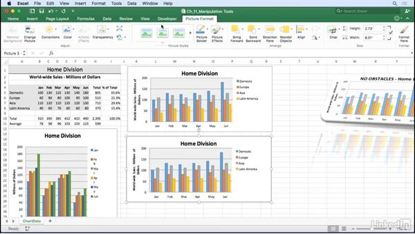Convert a chart to a graphic: Excel for Mac 2016: Charts in Depth
