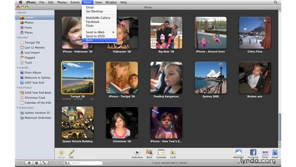 Sharing files with iWeb or iDVD: iPhoto '09 Essential Training