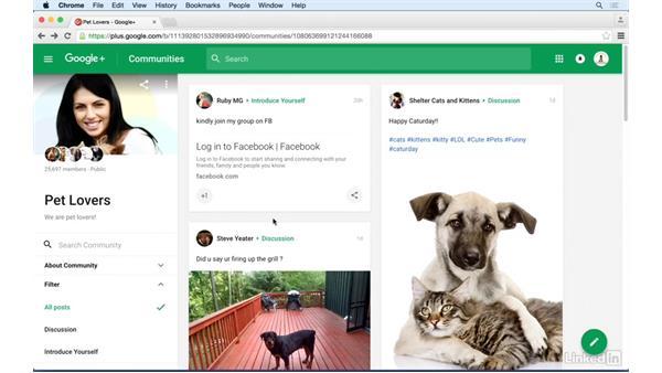 Understanding Google+ communities: Google+ for Business