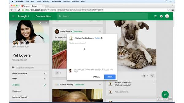 Resharing others' posts: Google+ for Business