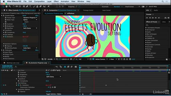 Evolution property loop for background effect: Motion Graphics Loops 02: After Effects Techniques