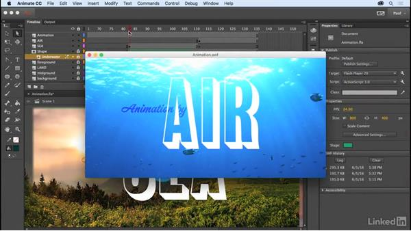 Welcome: Adobe Animate CC for Web Designers