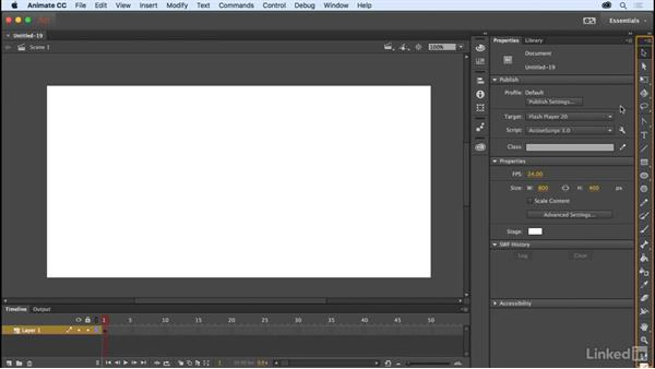 File types and the workspace: Adobe Animate CC for Web Designers